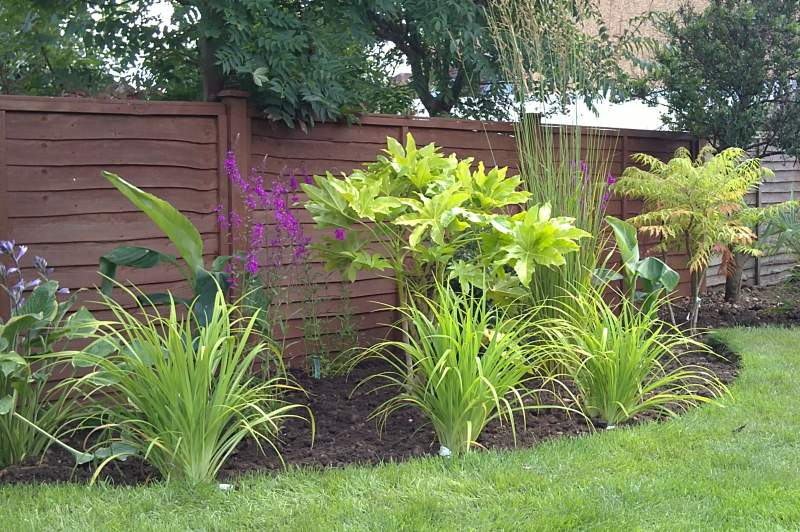 Hemel hempstead family garden feel good gardens for Grasses planting scheme